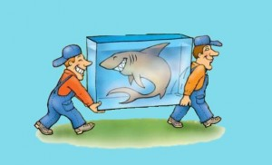 транспортировка рыб