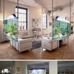 forms_aquariums11