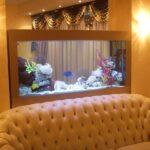 forms_aquariums9