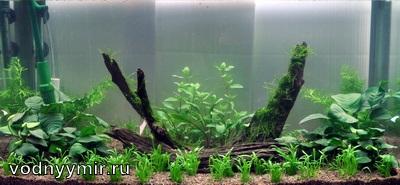 схема аквариума