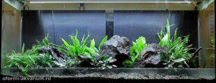 оформление аквариума 300 литров