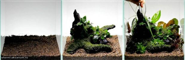 мини аквариум