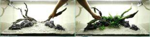 примеры оформления аквариумов