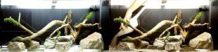 дизайн аквариума 180 литров